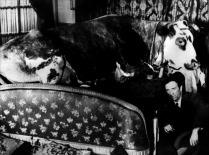 L'âge d'or - Luis Buñuel