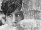 La complainte du sentier - Satyajit Ray