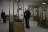 Un pigeon perché sur une branche philosophait sur l'existence – Roy Andersson